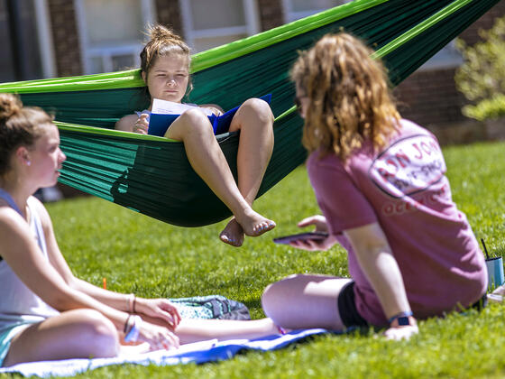 Student reading book sitting in hammock near students sitting on campus lawn.