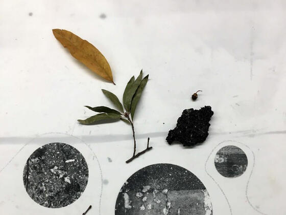 "Art by Nicole Ringel: ""Remnants, Remainders, Ghosts, and Continuities,"" 2019, found objects and silkscreen on translucent paper, installation detail (dimensions variable)"