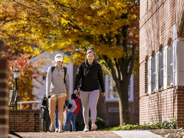 Students walking across campus on a sunny Fall day.